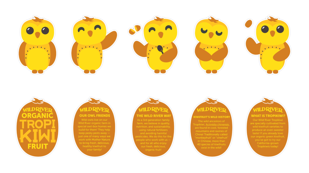 "Our Owl Friends and associated kiwi owl logos are trademarks of Wild River Marketing Inc. Designed by Ben Young Landis and Guy Rogers. Character sheets for Wild River's Our Owl Friends. The sheet features gold kiwi owls in standing, waving, scooping, respectful, and playful poses. Addition text in kiwi-shaped backgrounds read: Our Owl Friends: Wild owls live on our Wild River organic farm in special owl-box homes we build for them! They help keep pesky pests away — just one of many ways we work with Mother Nature to bring fresh, delicious kiwifruit to your family! The Wild River Way: As a third generation family farm, we believe in quality, nutrition, and sustainability, using natural fertilizers and avoiding harmful pesticides. We do this for the people who work with us — and for all who enjoy our fresh, delicious, organic fruit! Kiwifruit's Wild History: The wild ancesters of Tropikiwi, Actinidia chinensis, are found in cool, forested mountains and ravines of China! Traditionally called ""monkeyfruit"" or ""vinefruit"" in Chinese, more than 40 species of kiwifruits exist in the wild! What is Tropikiwi? Our Wild River Tropikiwi are specially cultivated from wild kiwifruit varieties to produce an even sweeter taste! If you already love our organic green kiwifruit, you've got to try our California-grown Tropikiwis today!"