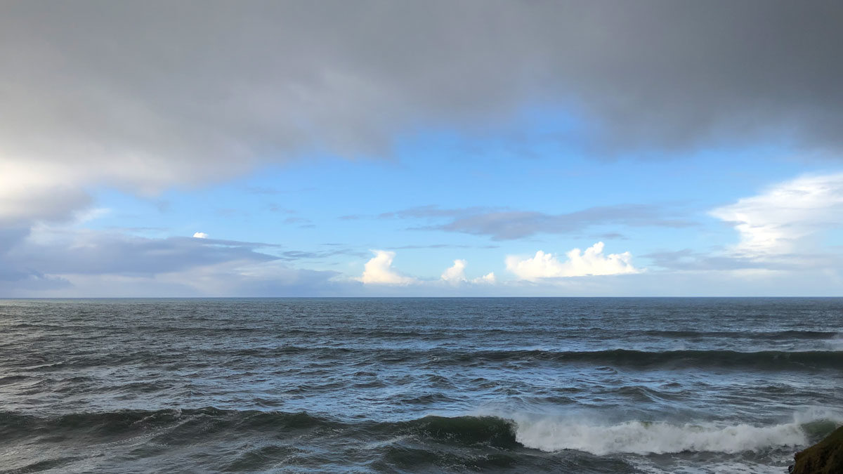 The morning horizon over the Pacific Ocean, viewed from the cliffs of the Long Marine Lab at University of California, Santa Cruz. Photo by Ben Young Landis.